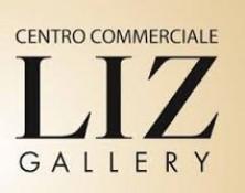 Liz Gallery